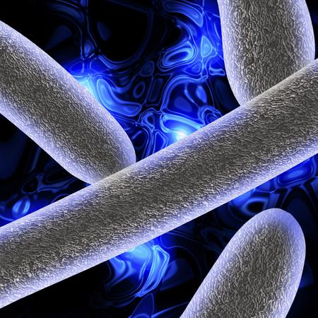 escherichia: Escherichia coli Stock Photo