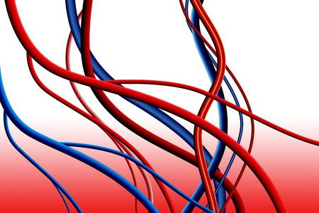 vasos sanguineos: Los vasos sangu�neos