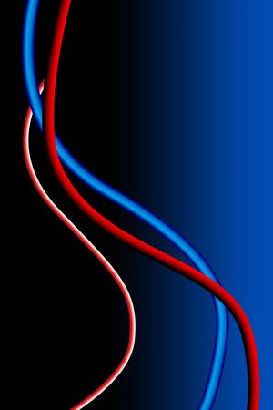 vaisseaux sanguins: Blood vessels