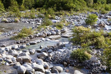 chubu: Oota River