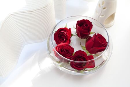 esthetic: Rose flowers