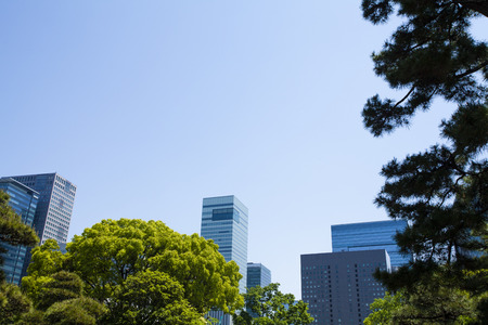 symbiotic: Fresh green and buildings Stock Photo