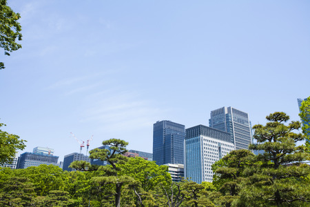symbiotic: Fresh green of Imperial Palace outer gardens and buildings