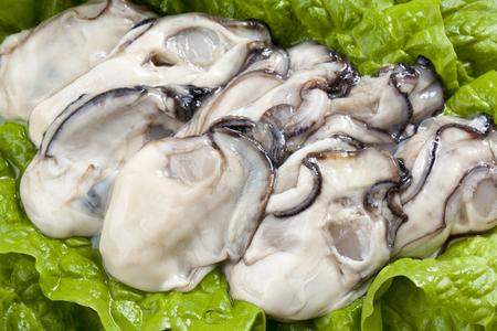 Rauwe oesters