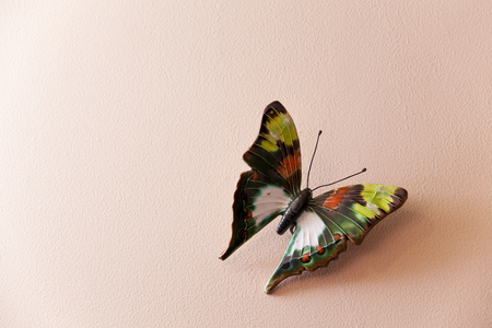 miscellaneous: Butterfly antique miscellaneous goods