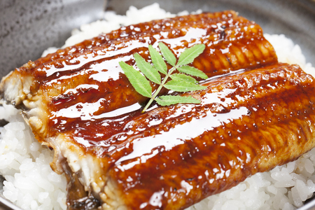 eel: The eel rice bowl