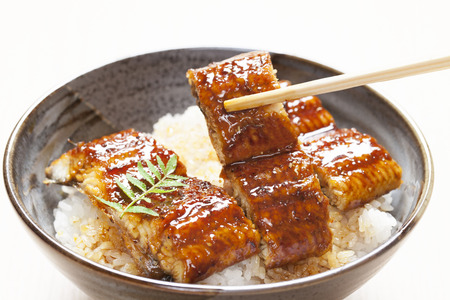 The eel rice bowl