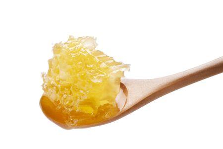 propolis: Nest honey honey Stock Photo