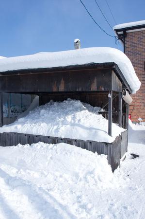 basurero: Volcado de Nieve Foto de archivo