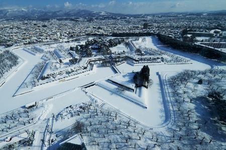 snowfall: Goryokaku it is snowfall