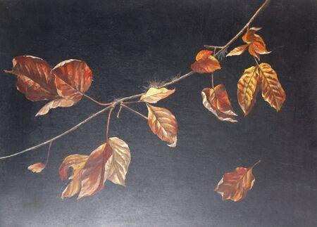 hojas secas: Hojas muertas