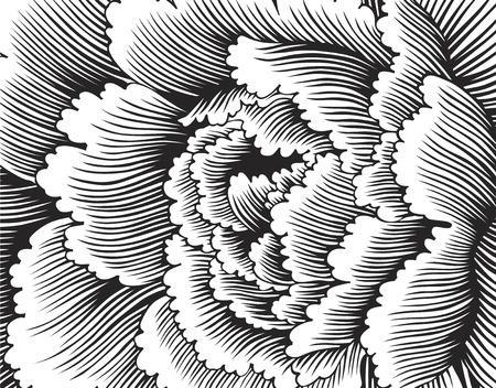 Japanese pattern 写真素材
