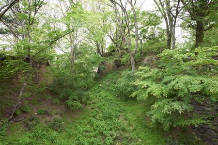 bygone days: Komoro Castle Ruins to leave a heavy shadow of bygone days also Karahori Stock Photo