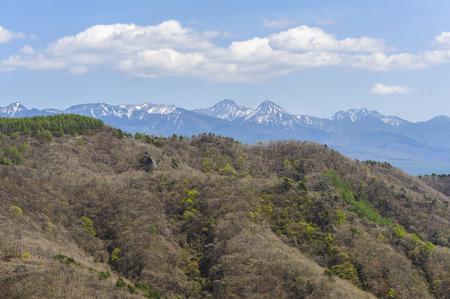 lingering: Harbor snow on distant peaks that began to bud Yatsugatake