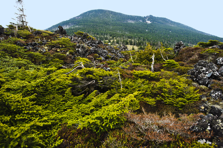 distant spot: Pumila and to spot garden distant view of the lava and Shimakareyama Stock Photo