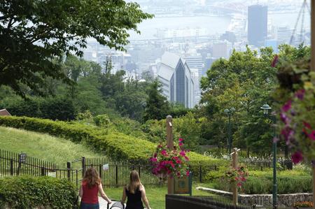 foreigner: Cloth argument herb garden