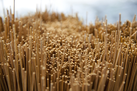 domestically: Natural grass Stock Photo