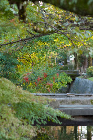 hydrophobic: Road autumn of philosophy Stock Photo