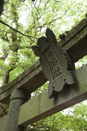 torii: Torii of Goseong shrine Stock Photo