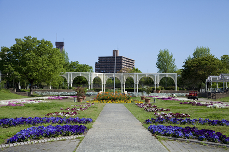 flower beds: Suminoekoen of flower beds