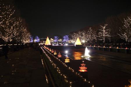 showa: The illumination of the Showa Memorial Park