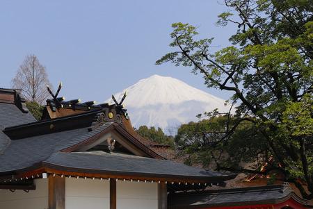 sengen: Company and Fuji