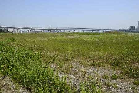 Odaiba of vacant land