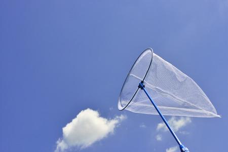 butterfly net: Butterfly net Stock Photo