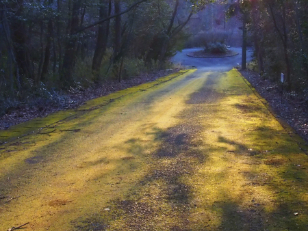 the setting sun: Road setting sun and shadow