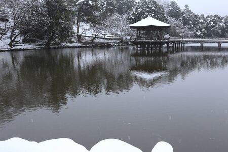 nara: Snow of Nara Park Ukimido
