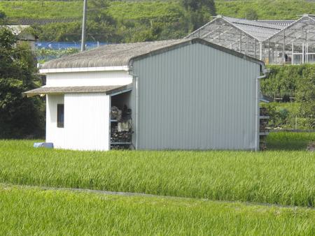farm equipment: Farm equipment hut in the rice field Stock Photo