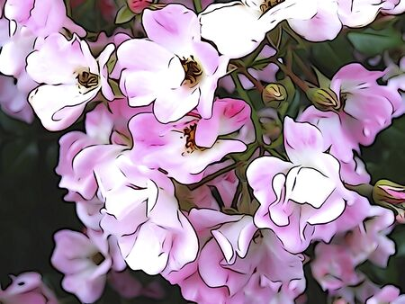 tone on tone: Illustration tone of flowers
