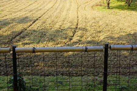 farmland: Reclamation of abandoned farmland