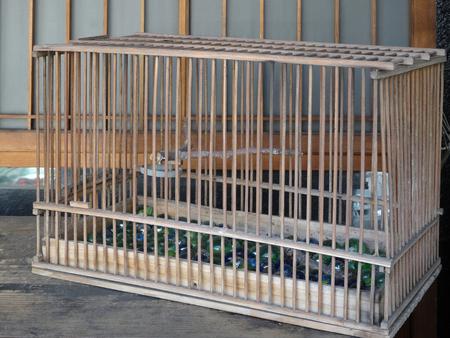 birdcage: Birdcage made of bamboo Stock Photo