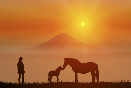 mount fuji: Horse of parent and child and Mount Fuji and sunrise Stock Photo