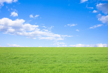 Grass and blue sky and clouds Stock Photo