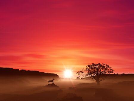 grandeur: Sunrise and horse