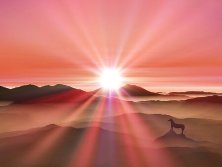 splendour: Sunrise and horse