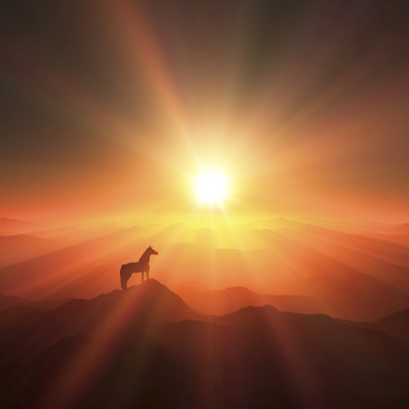 grandeur: Horse and sunrise