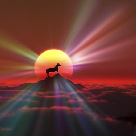 dawning: Horse and sunrise