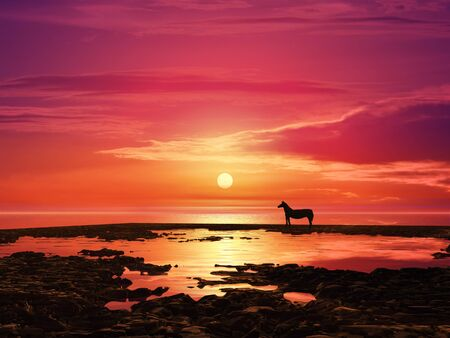 dawning: Sunrise and horse