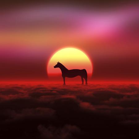 january sunrise: Horse and sunrise