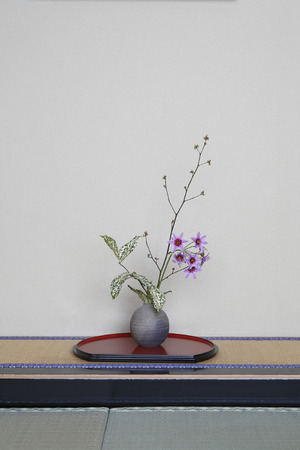 ikebana: Alcove of Ikebana