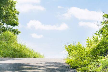 walking paths: Walking paths Stock Photo