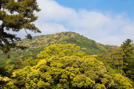 mt: Mt. kamiji kamijiyama