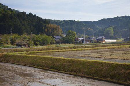 amano: Amano landscape