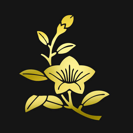 bellflower: Branch bellflower Edakikyo Stock Photo