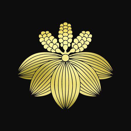 plantain: Plantain plantain