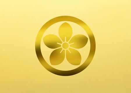 bellflower: Ota bellflower Otaki today