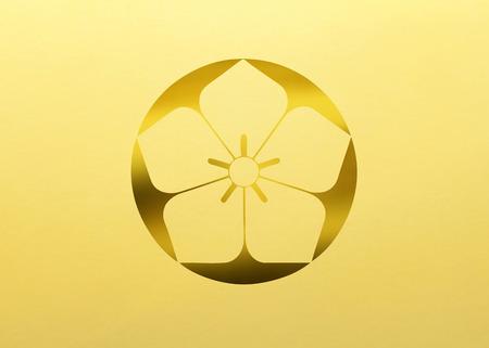 retention: Stone has land unplug bellflower Kokumochijinuki bellflower